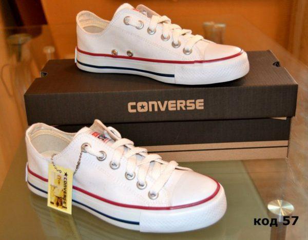 kedi_converse