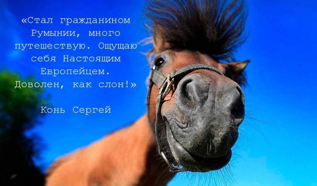 rumyniya-grazhdanstvo-pasport-yes