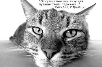 oformlenie-dokumentov-donetsk-lugansk-oblast